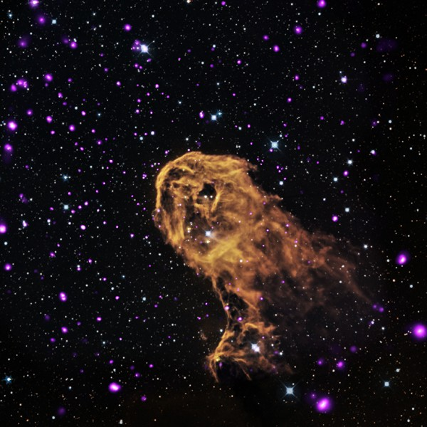 IC 1396A