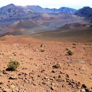 Figura 6. Maui. Il fondo del cratere dell'Haleakala con i suoi numerosi e variopinti coni vulcanici.