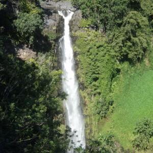 Figura 9. Maui. Una cascata nei pressi di Hana.