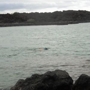 Figura 19. Maui. Il sottoscritto scruta il fondo della baia di Kalaeloa. Che spettacolo! (Non io…).