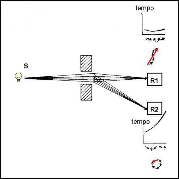 Figura 31