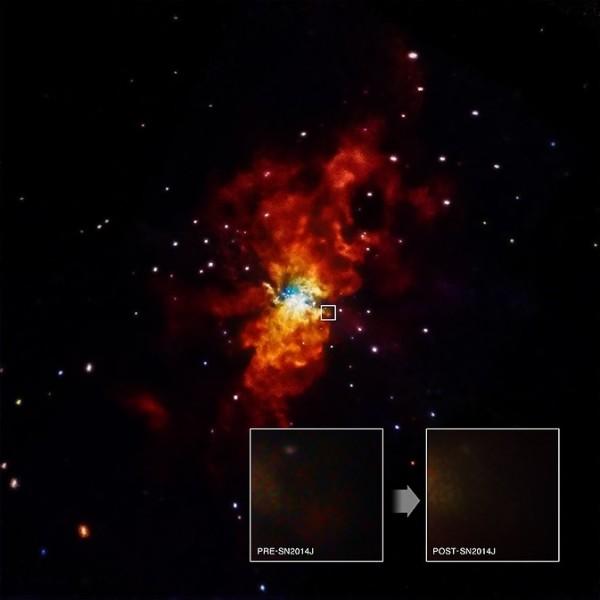 Immagine della galassia M82 con la supernova SN 2014J. Nei due riquadri le osservazioni X di Chandra, prima e dopo l'evento: il nulla assoluto. Fonte NASA/SAO/CXC/R. Margutti et al