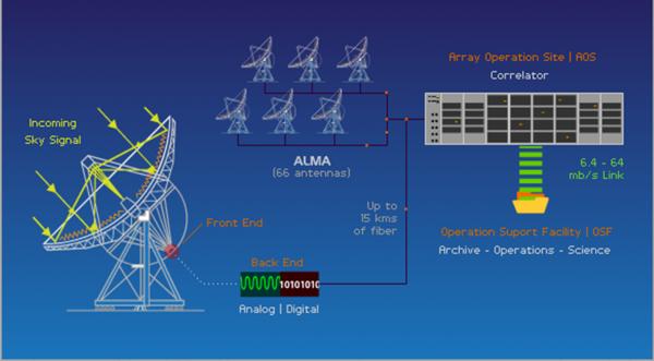 Lo schema di lavoro di ALMA. Il segnale della singola antenna viene trasmesso attraverso un afibra ottica al Correaltore che lo combina con quelli delle altre antenne producendo il risultato finale. Fonte: ALMA.