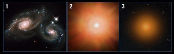 """L'illustrazione mostra tre fasi del nuovo processo formulato a seguito delle numerose osservazioni di Hubble. Due galassie """"normali"""" si uniscono (1). Lo scontro fa precipitare la gran parte del gas al centro della nuova enorme struttura dove si comprime e innesca una formazione stellare parossistica, che produce una tale energia da riscaldare ed espellere il gas non ancora coinvolto nella procreazione (2). Senza più carburante, la galassia smette di formare stelle e si tranquillizza sotto forma di un nucleo molto compatto di stelle vecchie (3). Fonte: NASA, ESA, and A. Feild (STScI); Science: P. Sell (Texas Tech University)"""