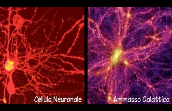 Permettetemi una piccola provocazione. Ho inserito una figura che confronta una cellula neuronale del cervello e un ammasso galattico. ovviamente, ognuna ha le sue ferrovie e le sue stazioni... E non diciamo niente sulla trasmissione delle informazioni. Prendiamola per quello che vale, ovviamente... Fonte: Nature's Scientific Report