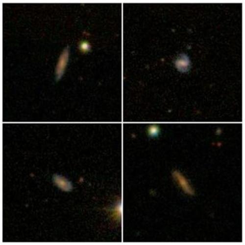 Immagini ottiche di quattro delle galassie molto ricche in idrogeno atomico osservate dal radio telescopio di Arecibo. Fonte: SDSS