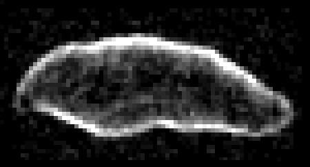 1620 Geographos in un'immagine radar ottenuta proprio a Goldstone nel 1994, quando era a 7 milioni di chilometri dalla Terra. (Fonte: Steven J. Ostro, JPL, NASA)