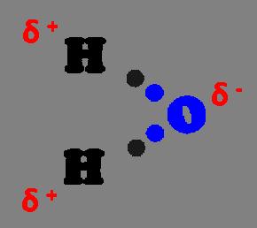 Figura 4 La coppia di elettroni di legame si trova più vicino all'ossigeno che all'idrogeno per l'elevata elettronegatività del primo. Questo crea delle parziali cariche intorno agli atomi creando una nuova forza di attrazione che costituirà il legame a idrogeno.
