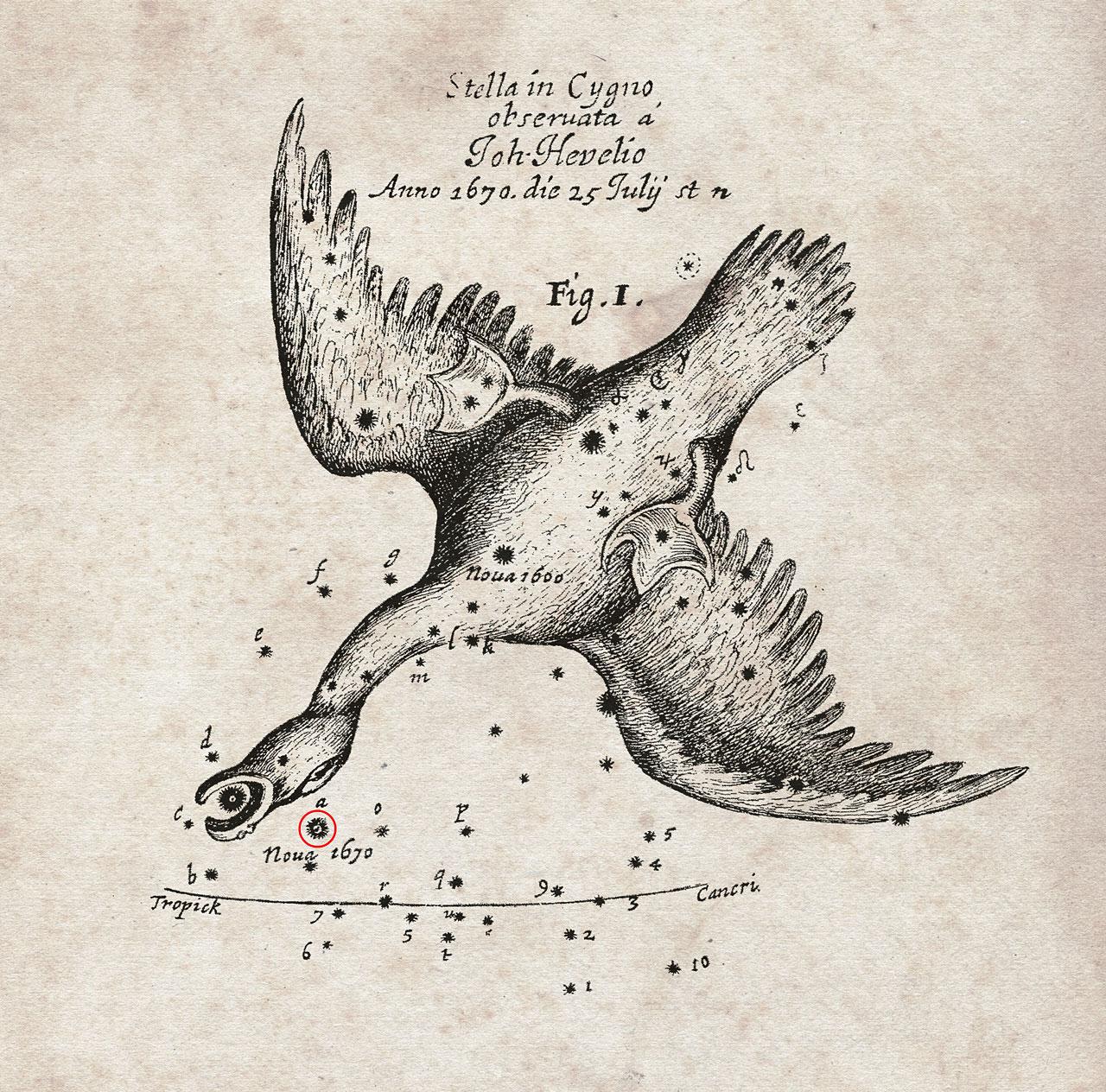 La posizione della nova ricordata da Hevelius. Fonte: Royal Society
