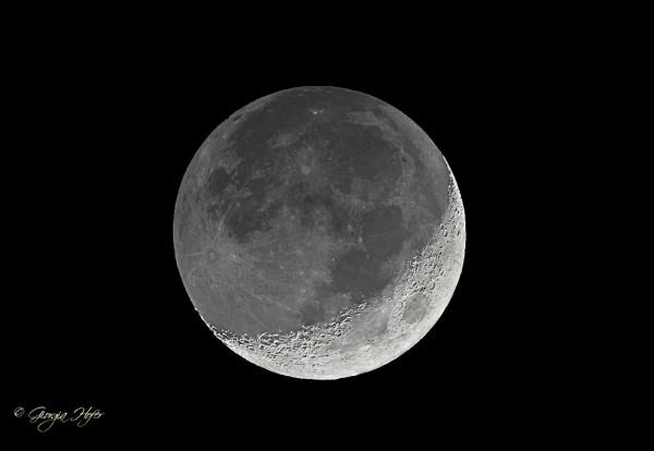 luna luce cinerea b