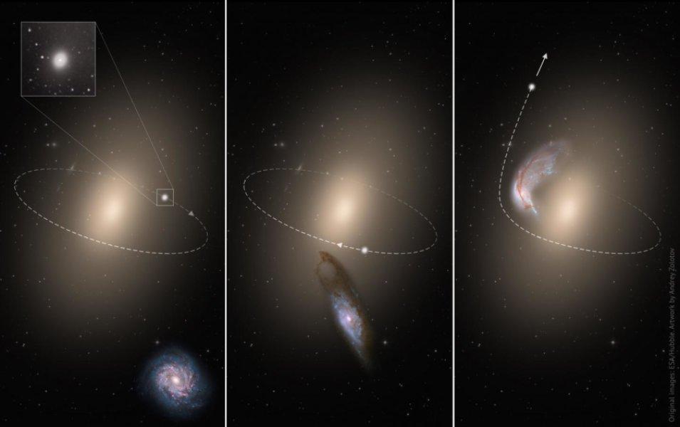 """Lo schema illustra la creazione di una galassia """"runaway"""". A sinistra, una galassia a spirale """"intrusa"""" si avvicina a una gigantesca galassia ellittica che è sistemata al centro di un ammasso. Attorno a quest'ultima già rivolve una piccola galassia ellittica molto compatta. Nel centro, vi è una vera e propria collisione galattica tra la spirale e la gigante ellittica. L'intrusa esercita una spinta gravitazionale sulla piccola ellittica e le impartisce una velocità superiore a quella di fuga dalla sua """"padrona"""". A destra, la piccola scappa, orami libera, mentre la spirale viene letteralmente divorata dalla più massiccia galassia centrale. Fonte: ESA/Hubble. Artwork by Andrey Zolotov"""