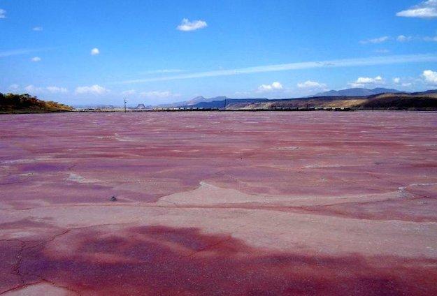 Il lago Magadi (il lago rosa) in Kenia