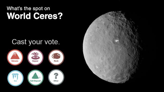 Votate, votate, votate!