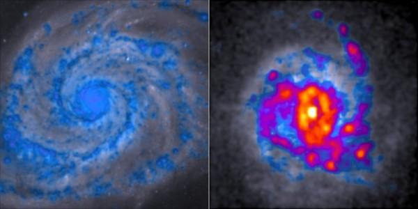 """A sinistra una galassia ordinata e regolare con la sua splendida forma a spirale. A destra un'agitata e irregolare galassia dalla forma """"ammucchiata"""". La prima gira più velocemente e produce pochissime stelle, mentre la seconda è oltremodo prolifica, come si vede dal colore rosso della sua parte centrale.  Fonte: Dr Danail Obreschkow, ICRAR e Hubble Space Telescope."""