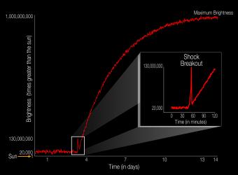La curva di luce di una supernova di tipo IIa.  Nell'inserto è mostrato l'effetto dell'onda d'urto, che dura in tutto circa 20 minuti. Fonte: NASA Ames/W. Stenzel