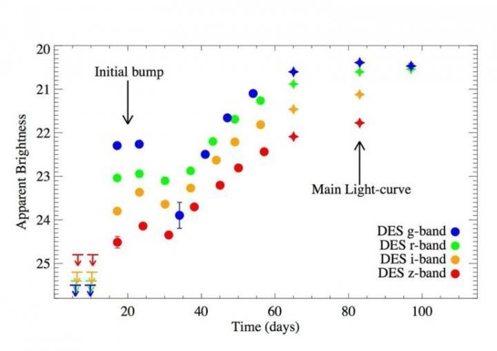 """Il grafico mostra l'evoluzione dell'apparente luminosità (in vari colori) della nuova supernova. Dopo un picco iniziale si ha un raffreddamento rapido, seguito da un aumento di luminosità simile alla sequenza """"normale"""" della supernova. Fonte: Mathew Smith."""
