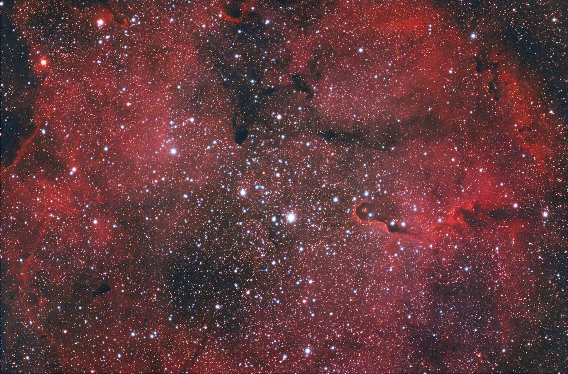 Nebulosa Proboscide