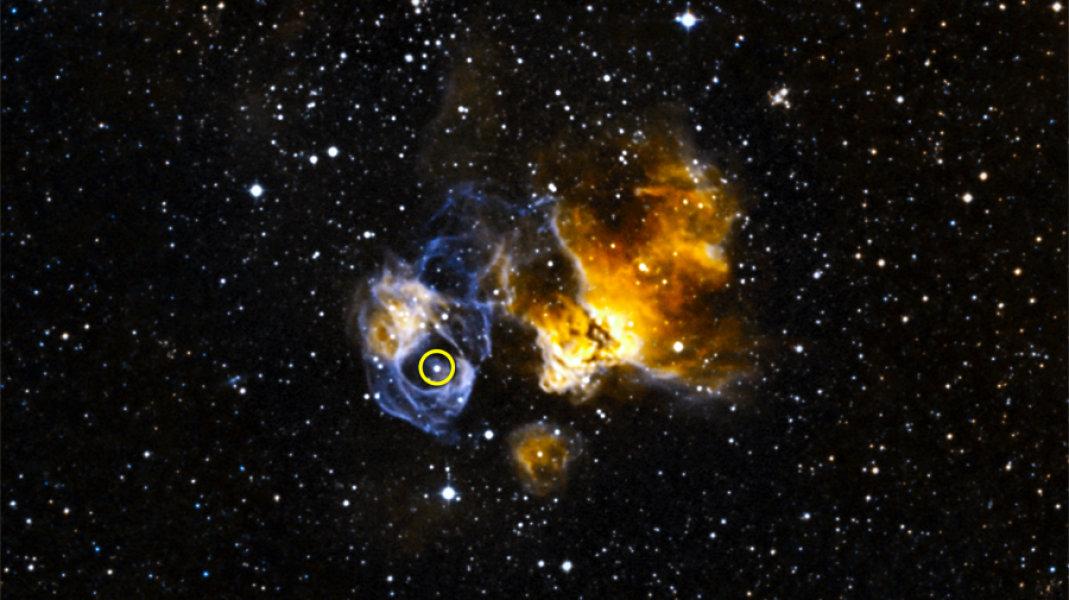 Figura 1. LMC P3 (la sorgente a raggi gamma, cerchiata in figura) si trova all'interno di ciò che resta di una supernova (DEM L241) nella Grande Nube di Magellano. Fonte: NOAO/CTIO/MCELS, DSS