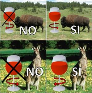 bisonte-canguro