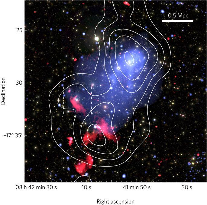 Le emissioni radio dal GMRT sono mostrate in rosso. L'immagine azzurra si riferisce a quelle X di Chandra. La distribuzione delle galassie è mostrata dai contorni bianchi. Fonte: NASA/CXC/SAO, TIFR/NCRA/GMRT, NAOJ/Subaru: R. van Weeren et al