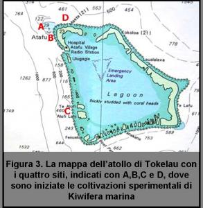mappa-atollo