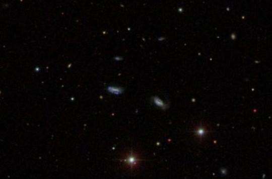 Un'immagine ottenuta dalla SDSS (Sloan Digital Sky Survey) mostra un gruppo di galassie nane che sono sicuramente legate gravitazionalmente tra di loro e stanno concentrandosi verso un unico punto.  Ne sono stati trovati altri sei, che potrebbero favorire l'idea che le super galassie si siano formate nell'Universo primordiale attraverso questo lavoro di unione di piccoli mattoni. Fonte: Sloan Digital Sky Survey