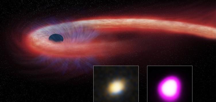 Una visione artistica del pasto del nostro buco nero, sostenitore del mangiar bene e mangiare lentamente. Fnte: CXC/M. Weiss; X-ray: NASA/CXC/UNH/D. Lin et al, Optical: CFHT.
