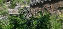 La necropoli di Norchia