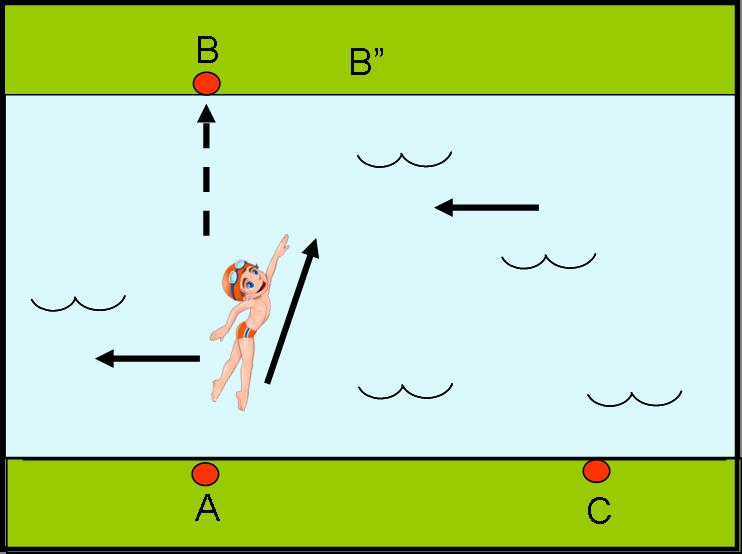 Figura 5b
