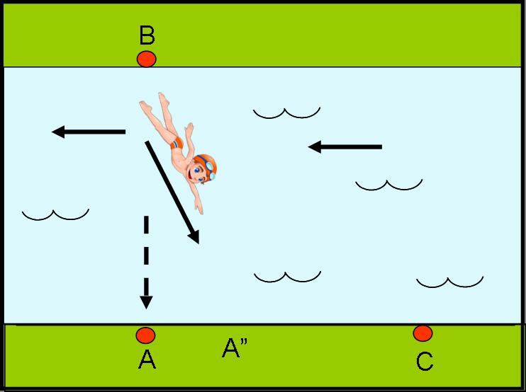 Figura 5c
