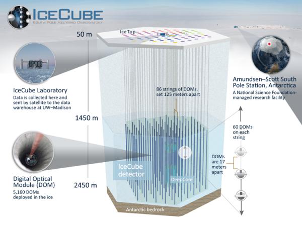 Uno schema del gigantesco rilevatore i particelle, inserito profondamente nel ghiaccio antartico. Fonte: IceCube Collaboration.