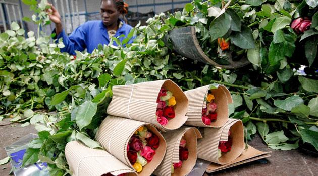 FLOWERS-KENYA