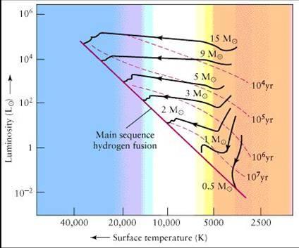 Figura 22: Le tracce delle varie PMS in funzione della massa.Sono anche indicate le linee di uguale tempo trascorso dalla nascita stellare.