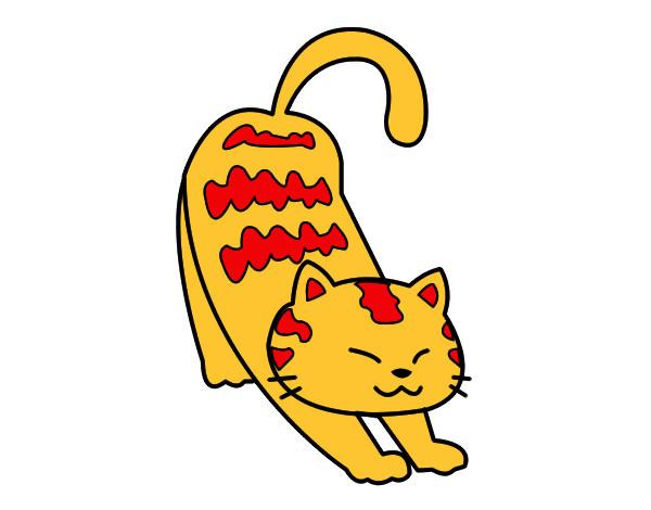 gatto-accidioso-animali-gatti-dipinto-da-giuly007-1059230