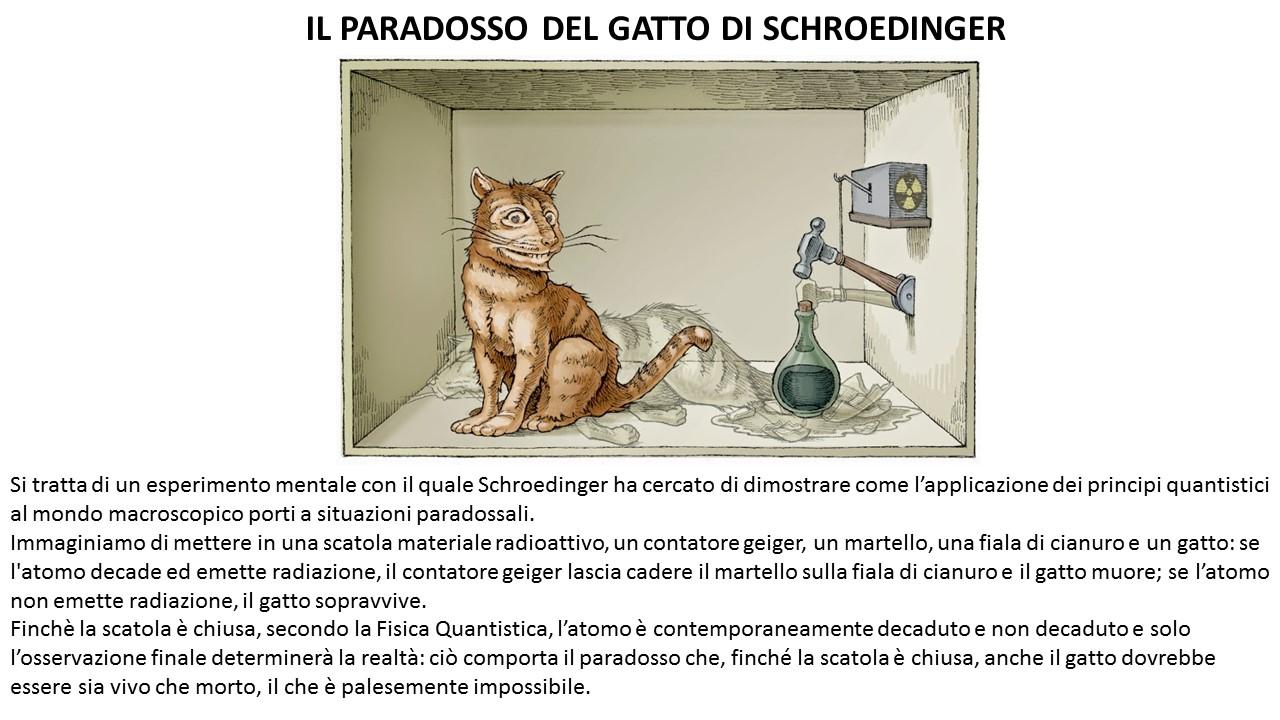 Gatto-Schroedinger