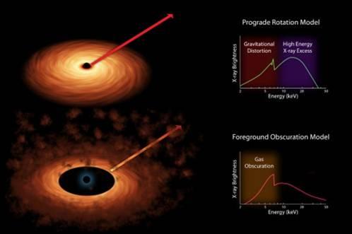 Figura 2. In alto la luce che proviene dal disco non trova intoppi, in basso le nuvole disturbano lo spettro. NuSTAR ha potuto facilmente eliminare la seconda possibilità.