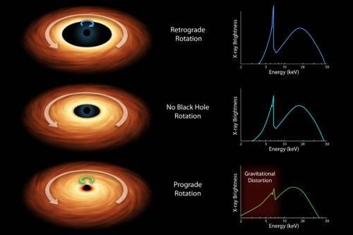 Figura 4. I tre casi di rotazione che causano una maggiore o minore vicinanza del disco dall'orizzonte degli eventi. Ognuno di essi causa una diversa altezza del picco X (e anche piccole deformazioni) e una diversa dispersione della parte più energetica (a destra). In generale, più un disco è vicino e più veloce è la sua rotazione. Tutte le immagini sono state preparate dal JPL della NASA.