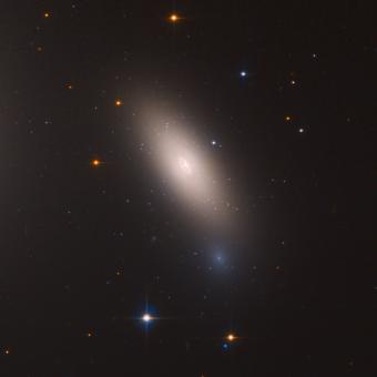 Il nostro Tantalo galattico (alias NGC 1277). Fonte: NASA, ESA, M. Beasley (Instituto de Astrofísica de Canarias), e P. Kehusmaa
