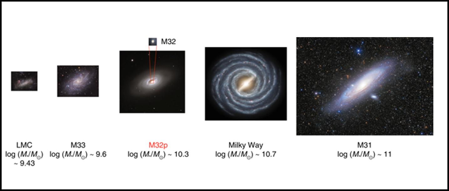 Le cinque maggiori galassie del nostro gruppo locale. La terza, indicata con M32p è la progenitrice dell'odierna M32. Fonte: R. D'Souza e E. F. Bell, Nature Astronomy, 2018