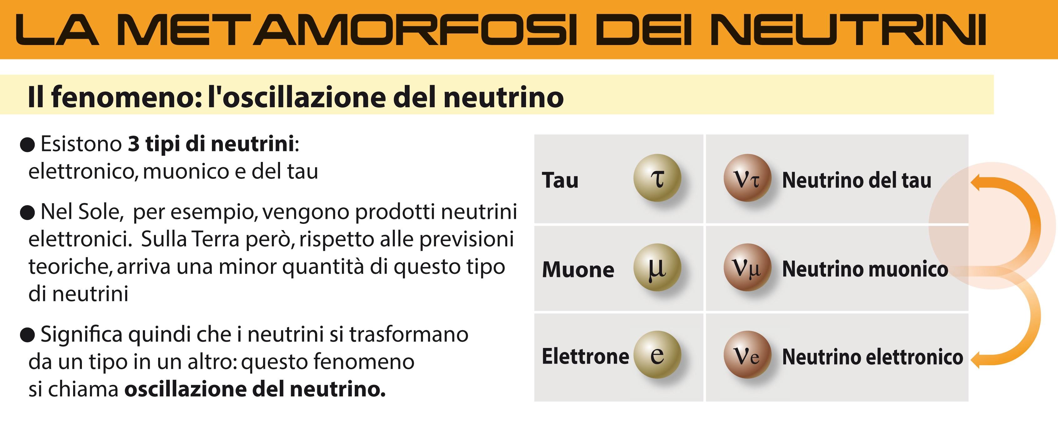 metamorfosi-dei-neutrini2