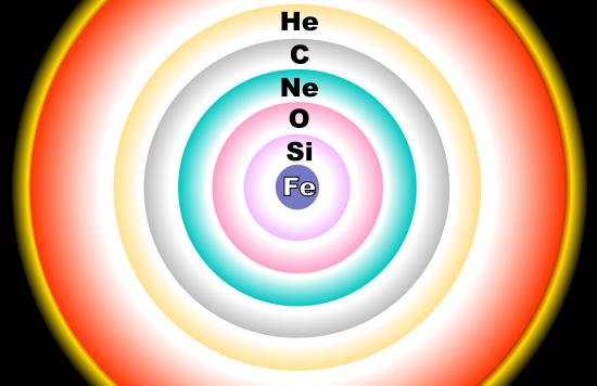 Una stellaa di massa molto superiore a quella del Sole riesce a produrre , per fusione nucleare, tutti gli elementi fino al ferro.  Poco prima di esplodere come supernova sembra veramente una colossale cipolla