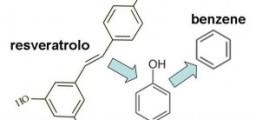 polifenoli
