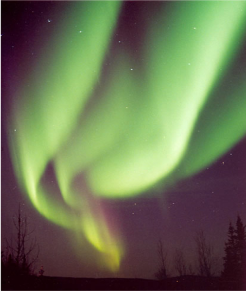 Sempre l'ossigeno, ma che stupenda tenda verde! Fonte: Jan Curtis