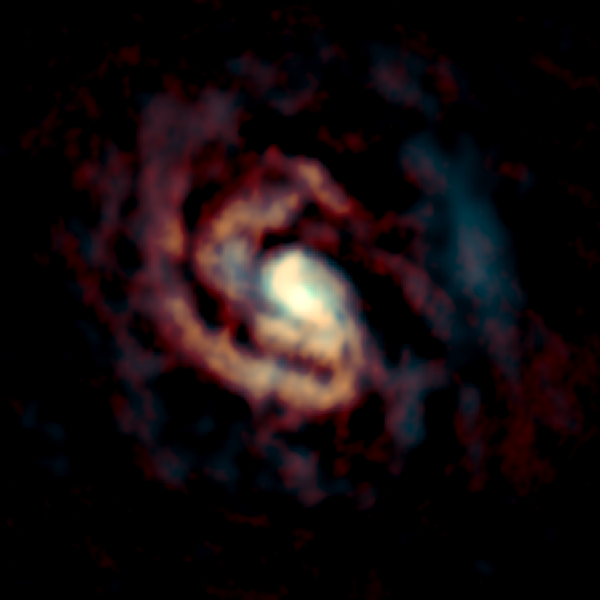 ALMA image of the gas around the supermassive black hole in the center of the Circinus Galaxy. The distributions of CO molecular gas and C atomic gas are shown in orange and cyan, respectively. Credit: ALMA (ESO/NAOJ/NRAO), Izumi et al.
