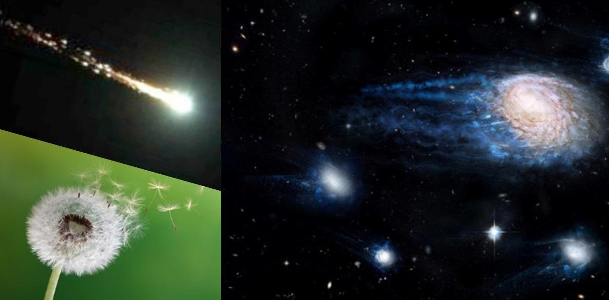 tarassaco-galassia-meteora