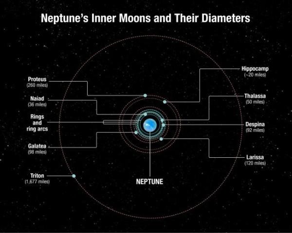 Il sistema satellitare interno di Nettuno