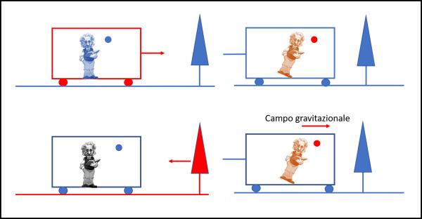 Figura 4. In alto, un osservatore esterno vede il vagone muoversi in avanti e, insieme a lui, sia Einstein che la pallina sospesa nell'aria. Ciò che si muove è stato disegnato in rosso. Tutti stanno andando a velocità uniforme. Ovviamente, abbiamo escluso la gravità terrestre. Imponiamo un'accelerazione negativa al vagone. Per semplicità la imponiamo tale che il vagone si fermi e la identifichiamo con una corda che tiri il treno dalla parte opposta. Il vagone diventa azzurro (è fermo), ma sia Einstein che la pallina continuano nel loro moto uniforme e ricevono la spinta vero destra. In basso, chi occupa il vagone si considera fermo e vede muovere verso di lui albero e terreno. Ciò che è dentro al vagone rimane in quiete. Improvvisamente si instaura un campo gravitazionale diretto versa destra. Il campo impone un movimento uguale e contrario all'albero e al terreno, per cui loro risultano fermi. Nuovamente, viene applicata una corda al vagone che lo rende immobile nel campo gravitazionale. Ne segue che gli unici che si muovono in avanti sotto l'azione del campo gravitazionale sono Einstein e la pallina.