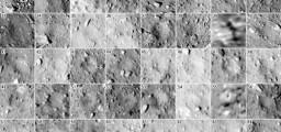 I crateri di Ryugu.