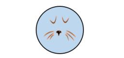 gattinoc