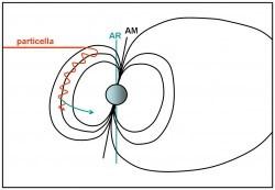 Figura 1. Una particella carica viene catturata da una una linea di campo magnetico e inizia a percorrerla da un polo all'altro, spiraleggiando per effetto ciclotrone.